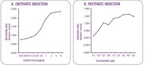 SN-CTP-boletín-ilus-Enzimatic-induction